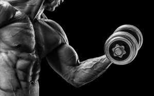 Weight Training For A Boxer – To Lift Or Not To Lift?