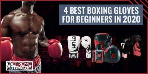 4 BEST BOXING GLOVES FOR BEGINNERS IN 2021